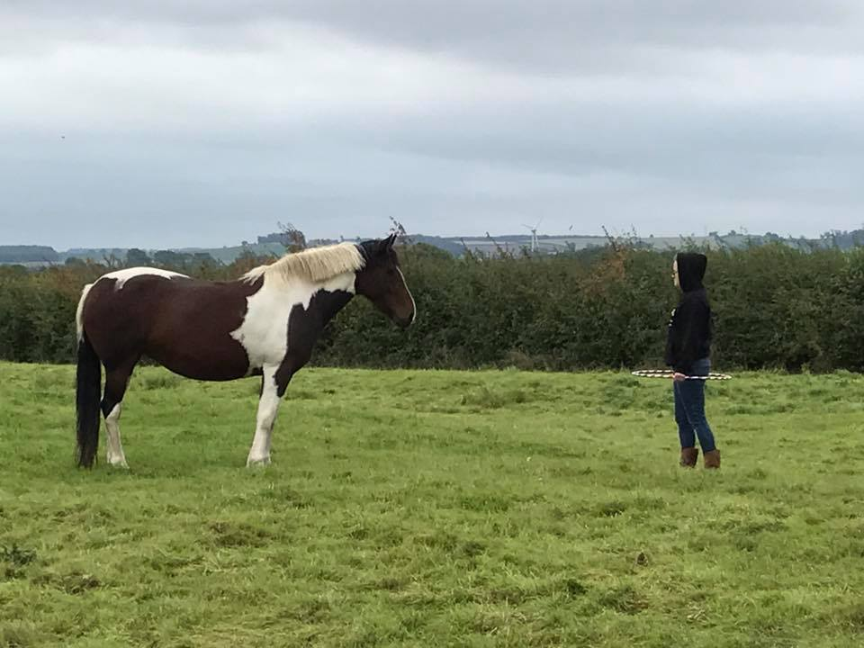 anxious teenager with horse