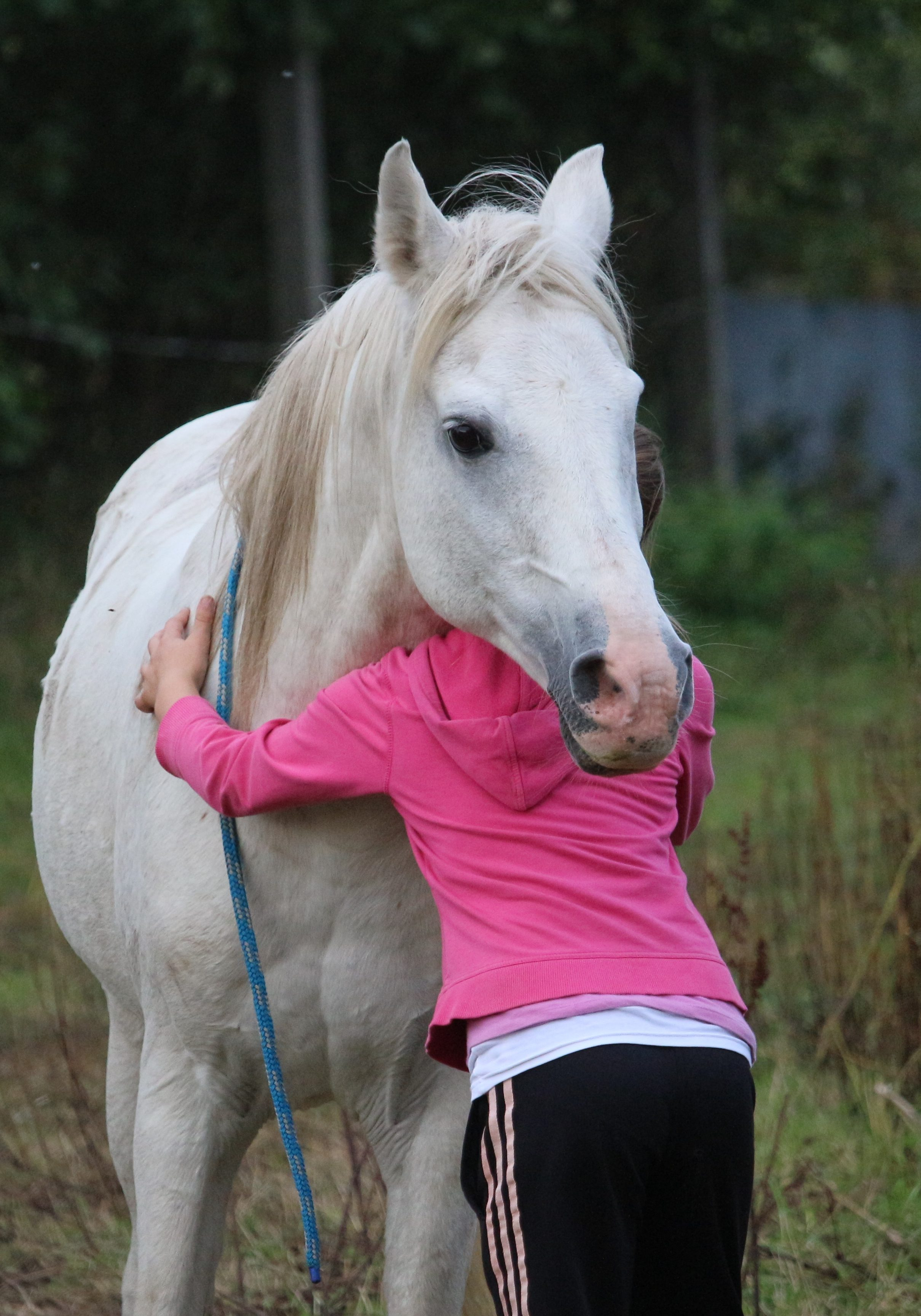 anxious child connected with horse